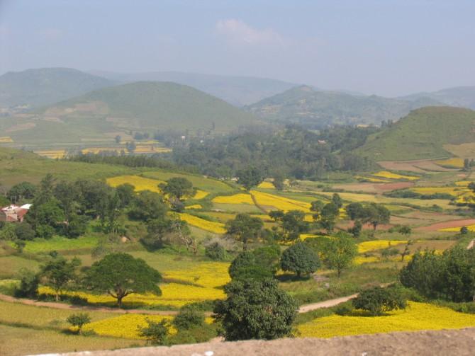 19 Araku Valley