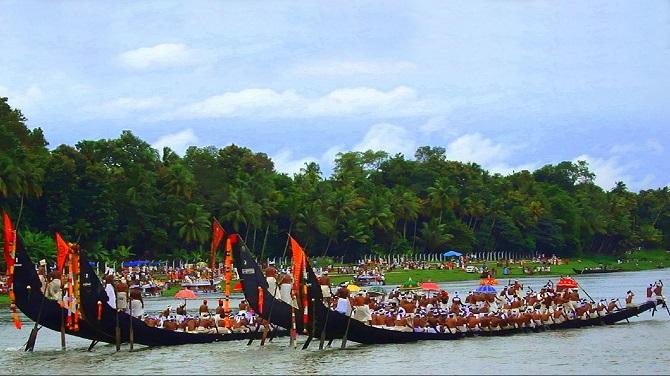 snake boat race 8