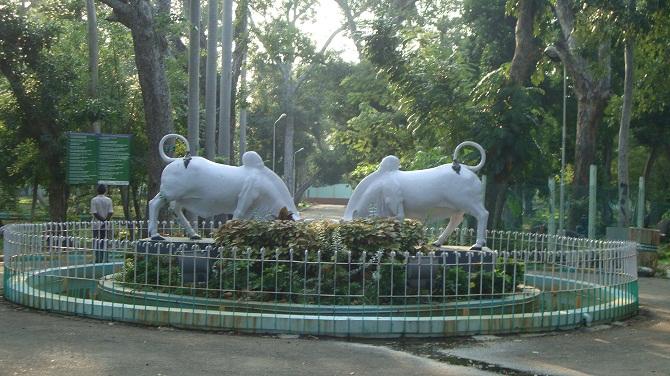 18 botanical garden
