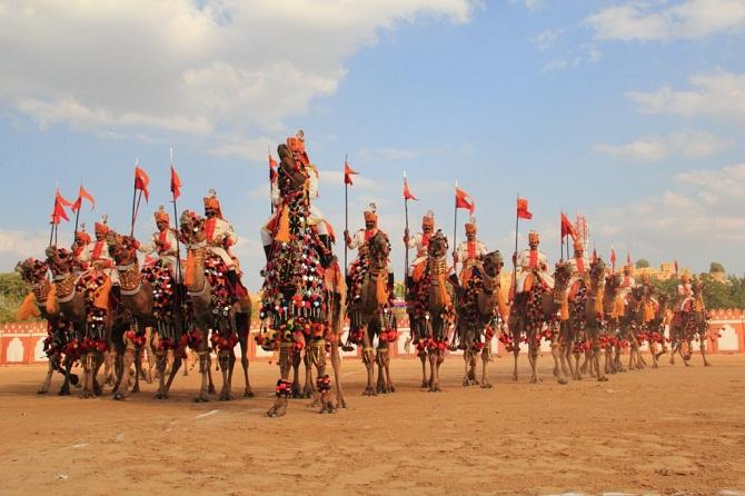 3 camel festival