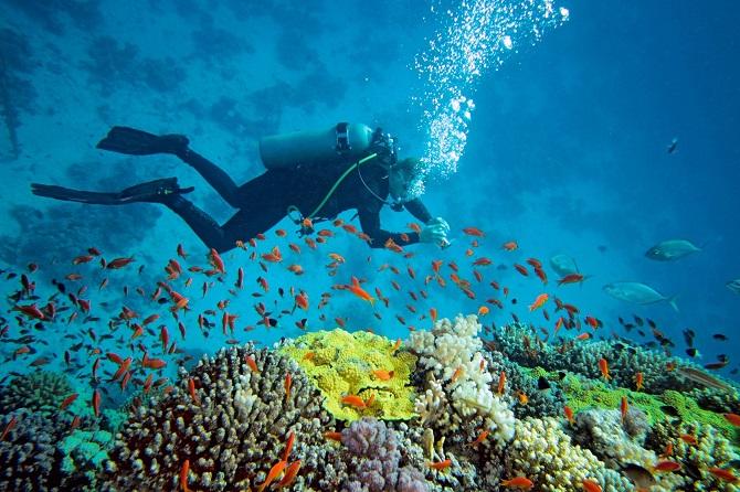 Andaman (1)