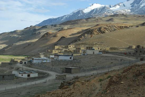 Tsomoriri camp
