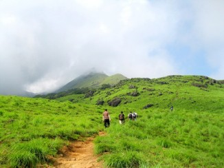 Nishani Motte Trek in Coorg