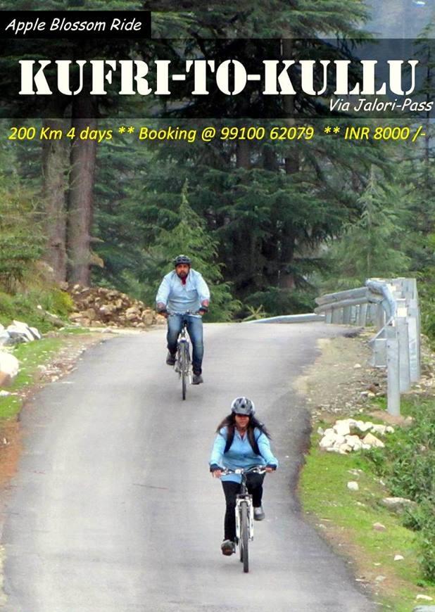 Cycling Kufri to Kullu