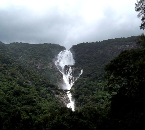 Dudhsagar waterfalls 1
