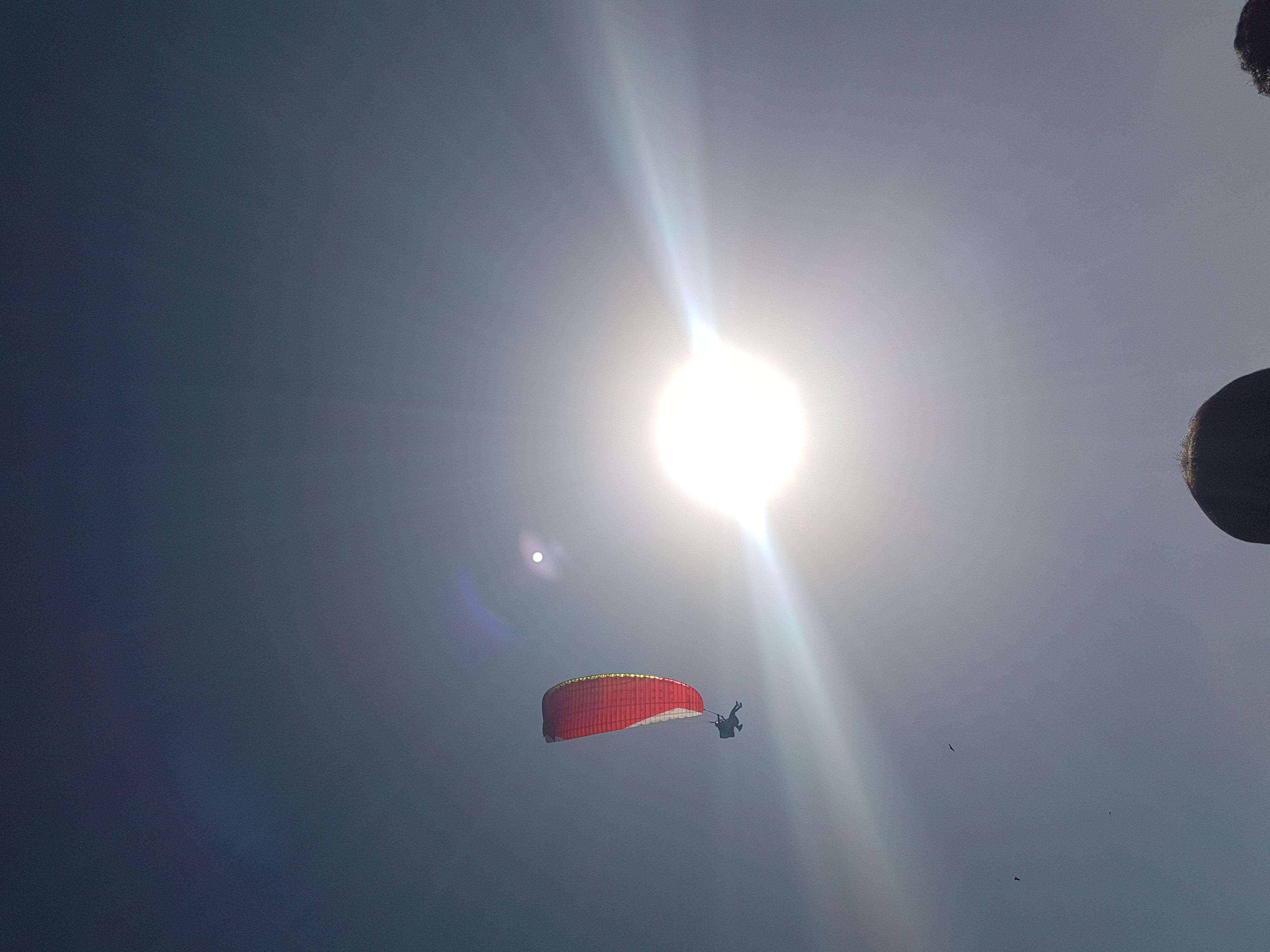 Paragliding at Bir Billing