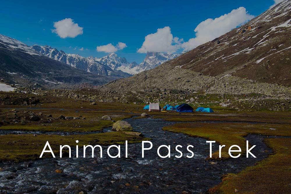 Animal-Pass-Tosh-Valley-Trek (1)