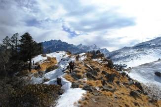 Kuari Pass Winter Trek 17