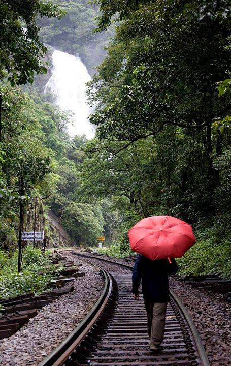 falls-umbrella-1
