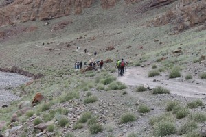 Move  The Body And Still The Mind In Stok Kangri Trek