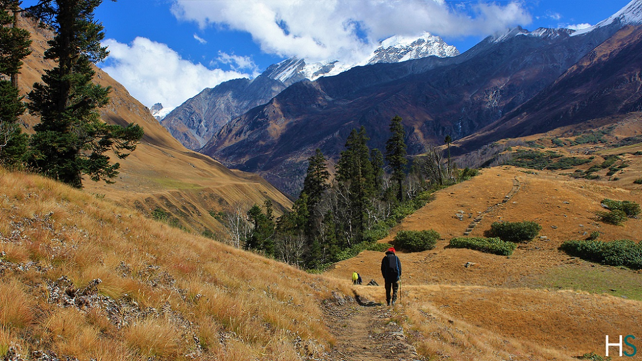 thanga-campsite-bali-pass