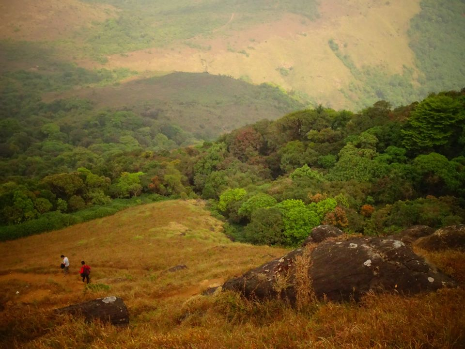 tadiandamol trek