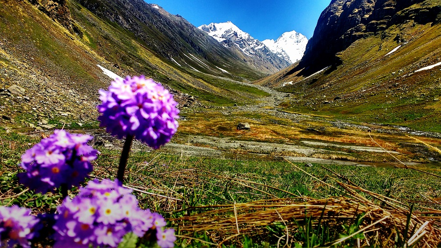 Trek To Valley of Flower
