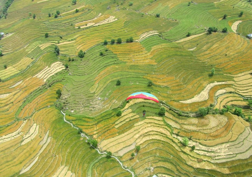 paragliding in india 1