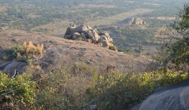 trekking trails of Narayangiri