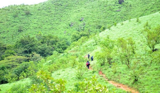 Trek To Kumara Parvatha