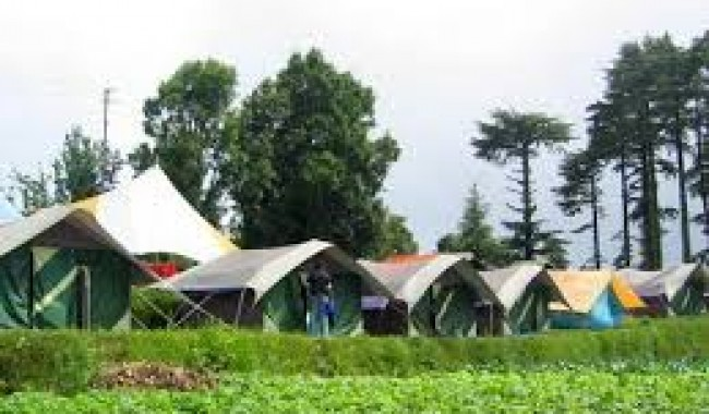 Camping in Dhanaulti Mussoorie